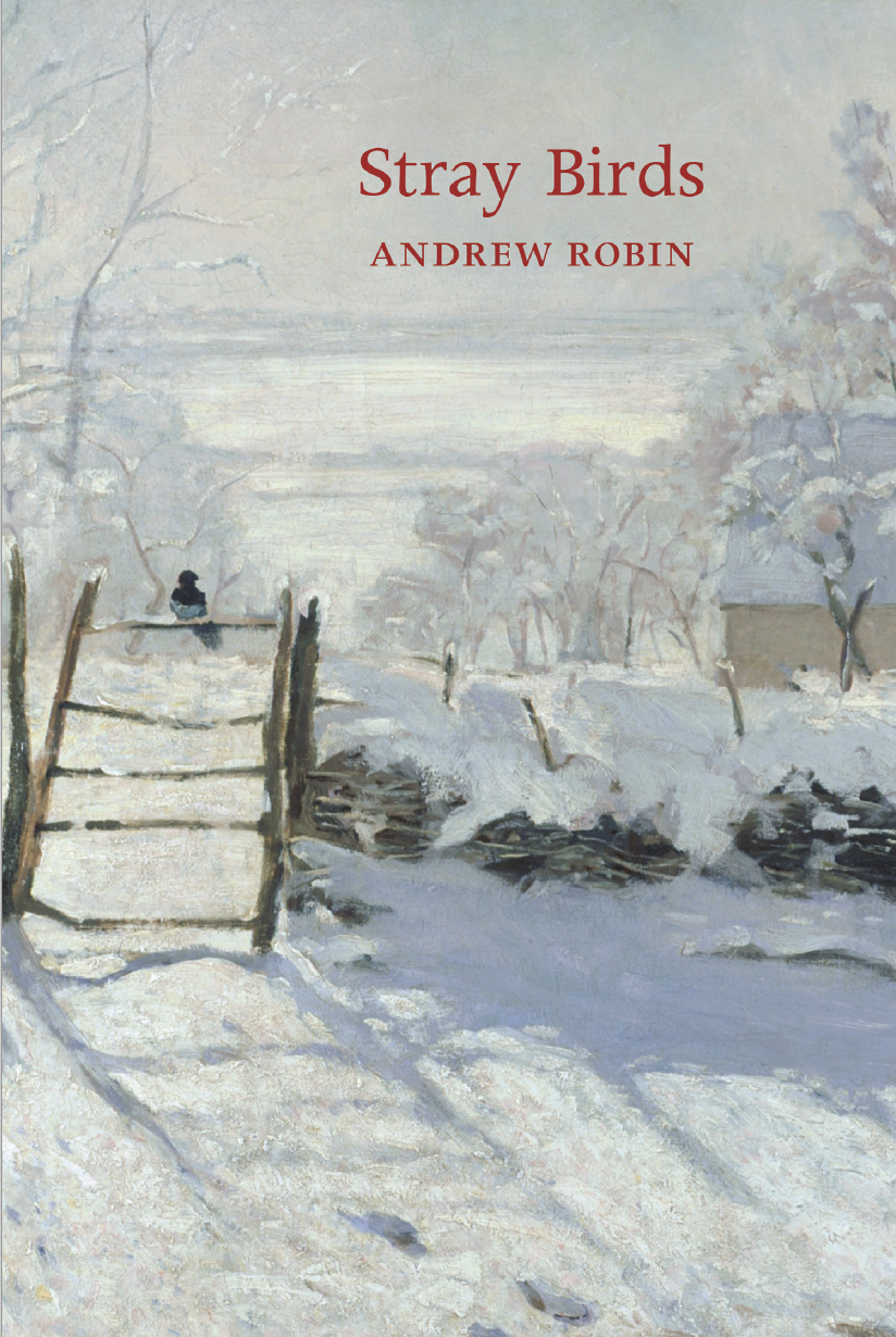 covershot of Stray Birds by Andrew Robin